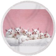 Bedtime Kittens I'm Not Tired Mom Round Beach Towel
