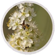 Bee And Blossoms Round Beach Towel