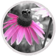 Bee And Cone Flower Round Beach Towel