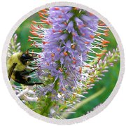 Bee And Its Lavender Delight Round Beach Towel