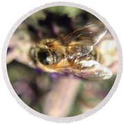 Bee Bee Round Beach Towel