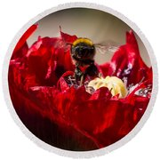 Bee Front With Red Flower Round Beach Towel