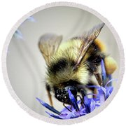 Bee In A Bubble Round Beach Towel
