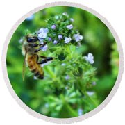 Bee Is In The Oregano Round Beach Towel