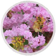Bee On A Crepe Myrtle Flower Round Beach Towel