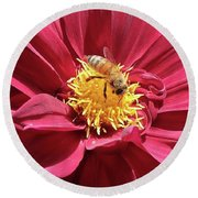 Bee On Beautiful Dahlia Round Beach Towel