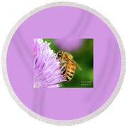 Bee On Chive Flower Round Beach Towel by Ann E Robson