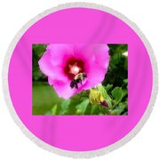 Bee On Edge Of A Hibiscus Flower Round Beach Towel