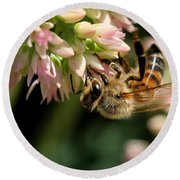 Bee On Flower 1 Round Beach Towel