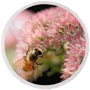 Bee On Flower 3 Round Beach Towel