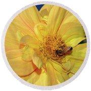 Bee On Pretty Dahlia By Kaye Menner Round Beach Towel