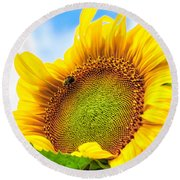 Bee On Sunflower Round Beach Towel