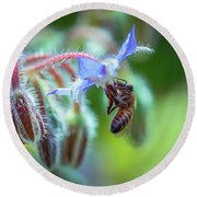 Bee On The Flower 2 Round Beach Towel