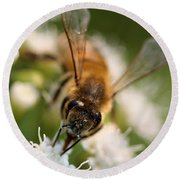 Bee On White Vertical Round Beach Towel