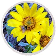 Bee On Wild Sunflowers Round Beach Towel