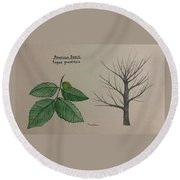 Beech Tree Id Round Beach Towel