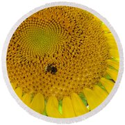 Bees Share A Sunflower Round Beach Towel