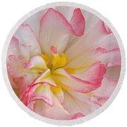 Begonia Pink Frills - Horizontal Round Beach Towel