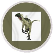 Beipiaosaurus Dinosaur On White Round Beach Towel