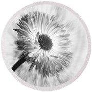 Bellis In Mono  #flower #flowers Round Beach Towel