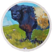 Belted Galloway Cow - The Blue Beltie Round Beach Towel