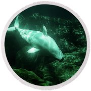 Beluga Whale 5 Round Beach Towel