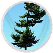 Beneath This Tree Lies Robert Edwin Peary Round Beach Towel