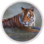 Bengal Tiger Laying Water Round Beach Towel