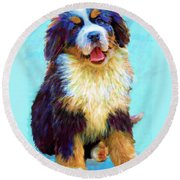Bernese Mountain Dog Round Beach Towel