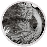 Best Feathers Ever Round Beach Towel