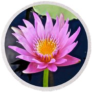 Beyond Beautiful Water Lily 2 Round Beach Towel