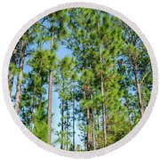 Slash Pines Round Beach Towel