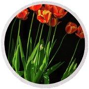 Bicolor Tulips Round Beach Towel