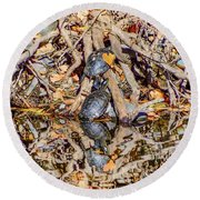 Bidwell Turtles In Fall Round Beach Towel