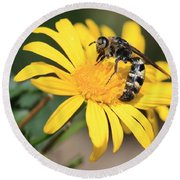 Big Bee On Yellow Daisy Round Beach Towel