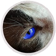 Big Blue Eyes Cat Round Beach Towel