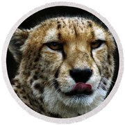 Big Cats 53 Round Beach Towel