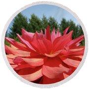 Big Dahlia Flower Blooming Summer Floral Art Prints Baslee Troutman Round Beach Towel