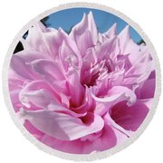 Big Dinner Plate Dahlia Flower Garden Floral Baslee Troutman Round Beach Towel