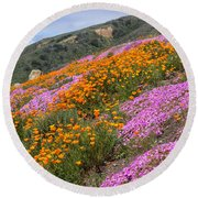 Big Sur Spring Round Beach Towel