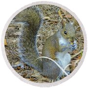 Big Tail Little Nut Round Beach Towel
