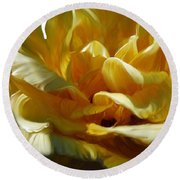 Big Yellow Rose Round Beach Towel