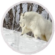 Billy Goat On The Move Round Beach Towel