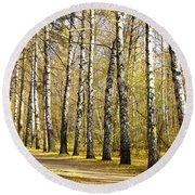 Birch Alley In Autumn Round Beach Towel