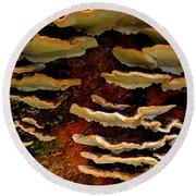 Birch Bracket Fungus Round Beach Towel