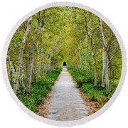Birch Pathway Perspective Round Beach Towel