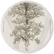 Birch Tree Round Beach Towel by Charles Harden