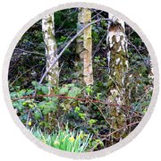 Birch Trees In London Round Beach Towel by Mindy Newman