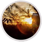 Bird At Sunset Color Round Beach Towel