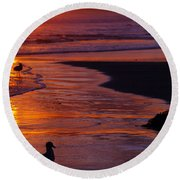 Bird At Sunset Round Beach Towel